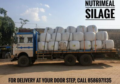 Silage Agro Private ...